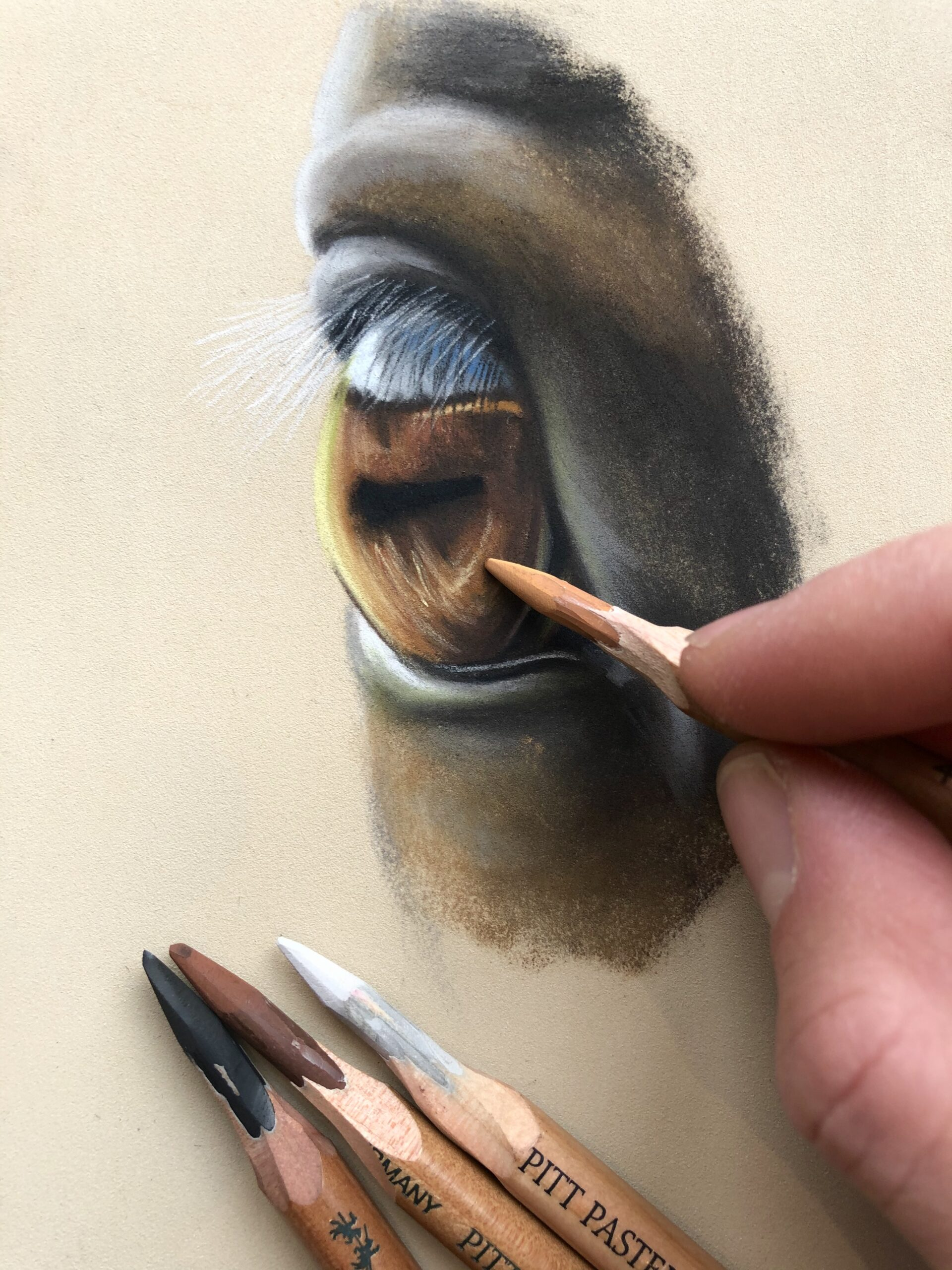 HORSE EYE, horse eye drawing, pastel pencil, how to use pastel pencils, difference between soft pastel and oil