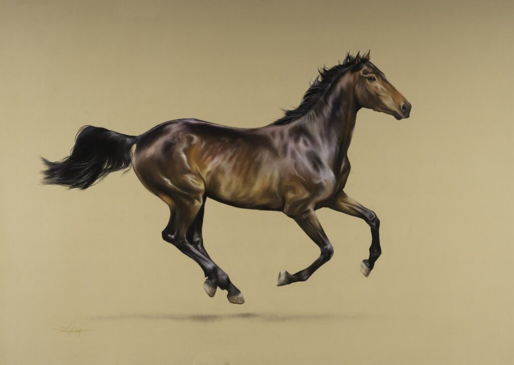 pastel pencil drawings of a galloping horse