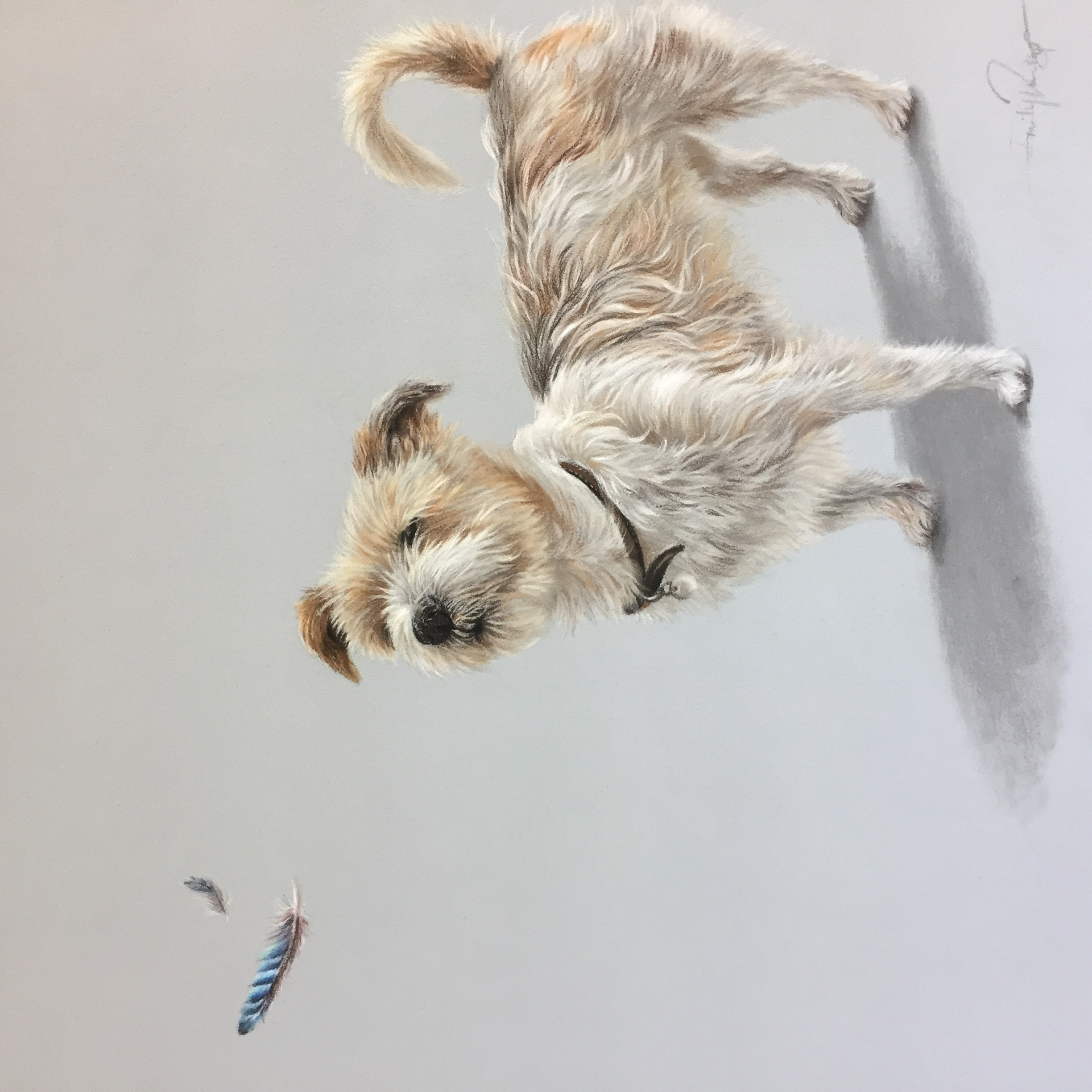 white and brown dog drawing in pastel pencils