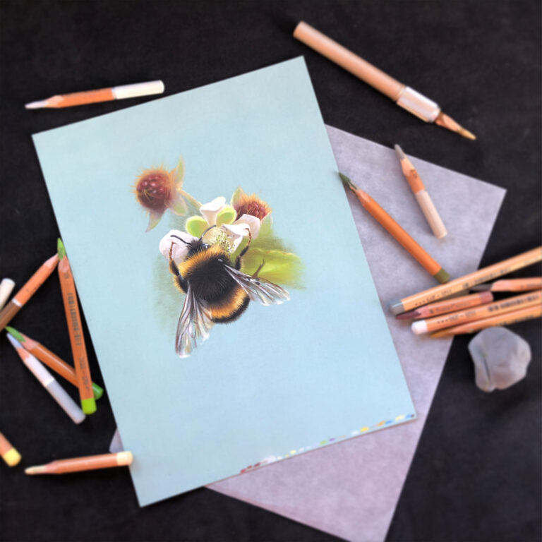bee in pastel pencil drawing online art workshop