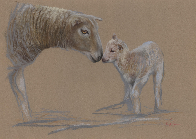 sheep and lamb drawing in pastel pencil, mother and lamb