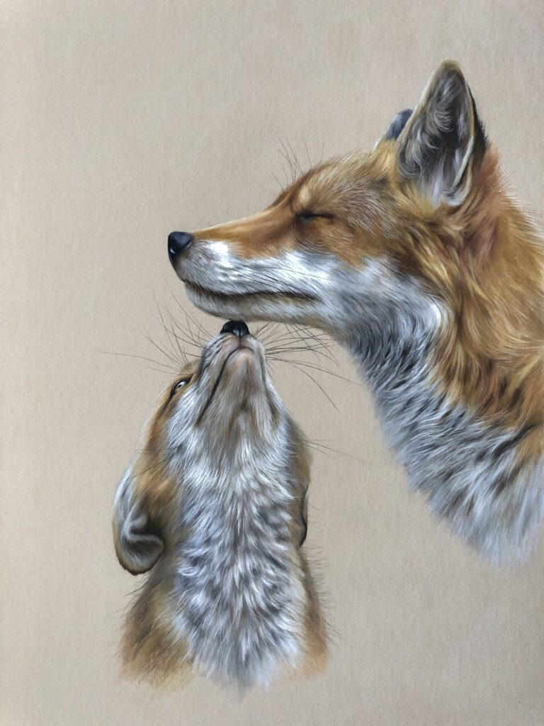 Pastel pencil fox drawing cub and mother very cute