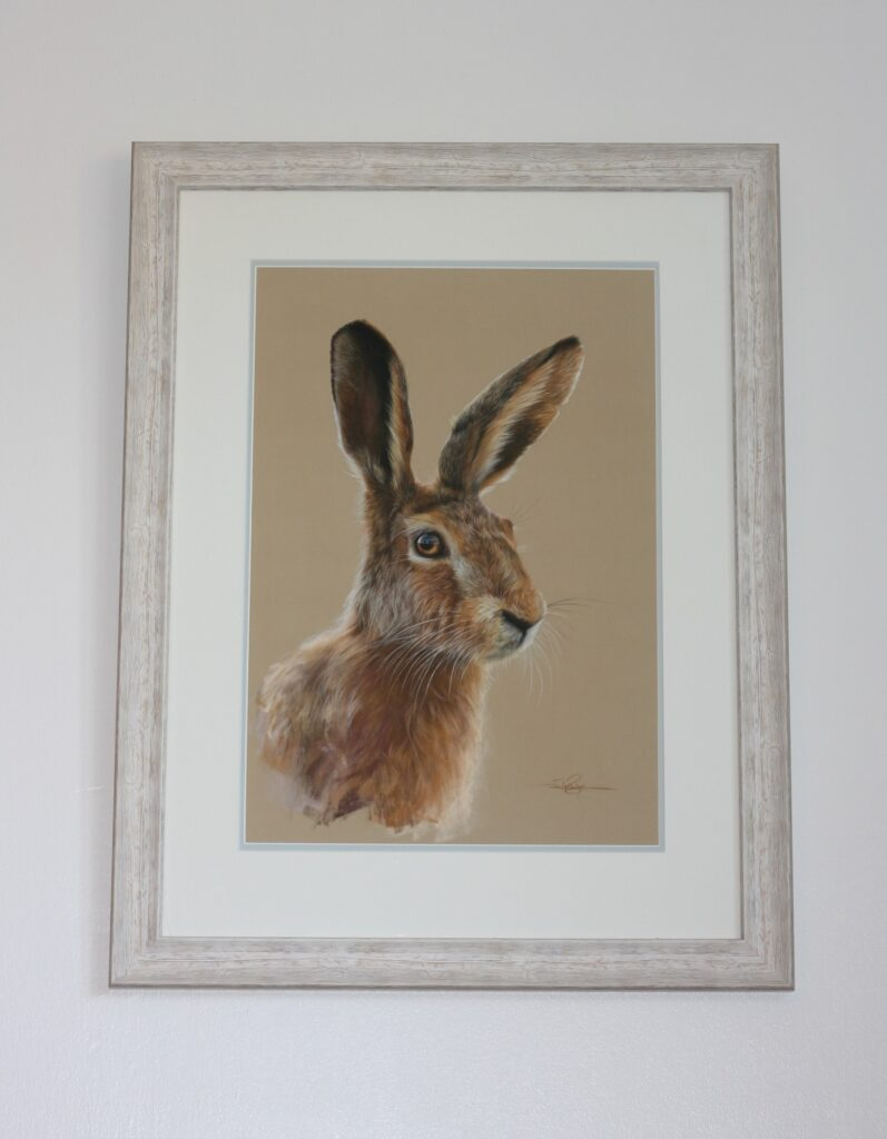 Double Mouted hare drawing framed